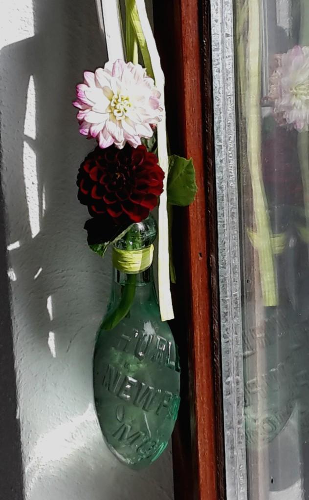 runde Vase Fenster